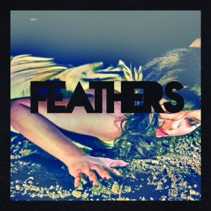 feathers_single