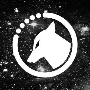 coyote_kisses_black_cat