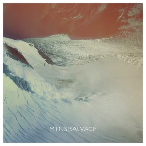 MTNS_Salvage