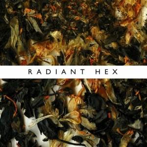 ninetails_radiant_hex