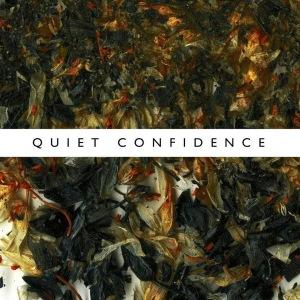 ninetails_quiet_confidence