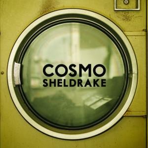 cosmo_sheldrake