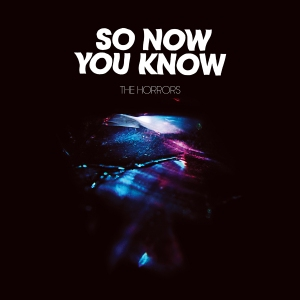 the_horrors_so_now_you_know